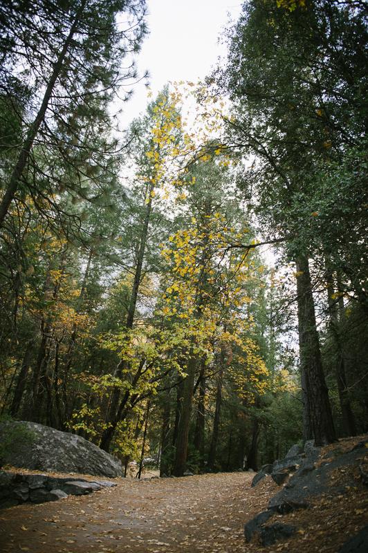 BlogJardimDaBabilonia - Yosemite Dia 2-24